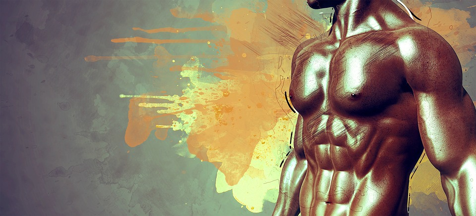 Memória Muscular